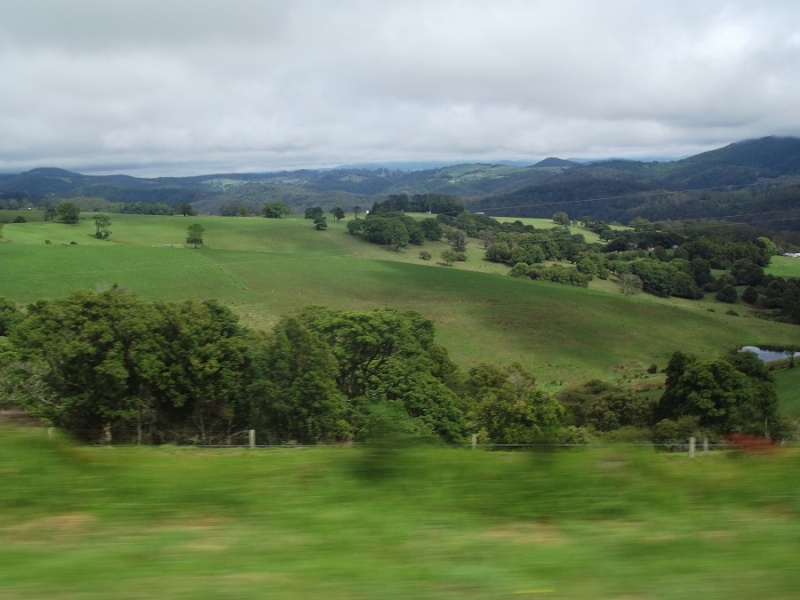 A Ride Through The Northern Tablelands - Page 4 A_ride15