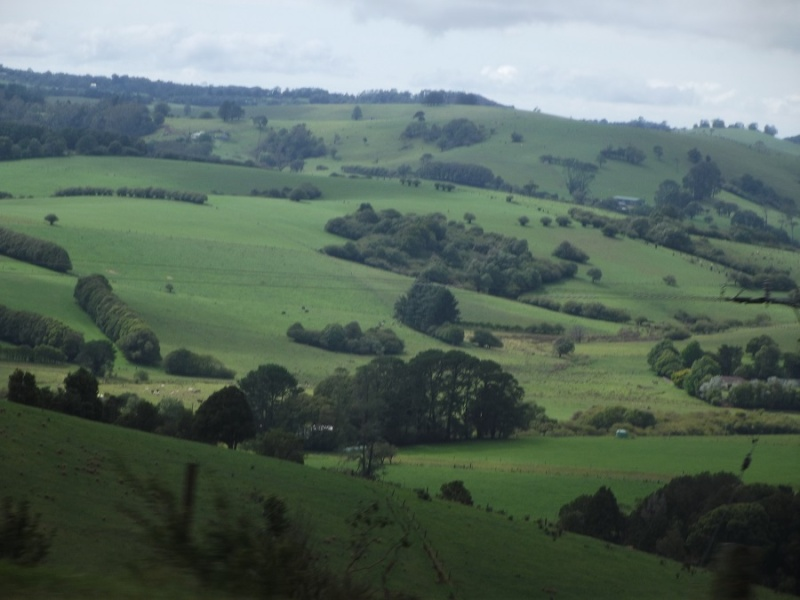 A Ride Through The Northern Tablelands - Page 4 A_ride16