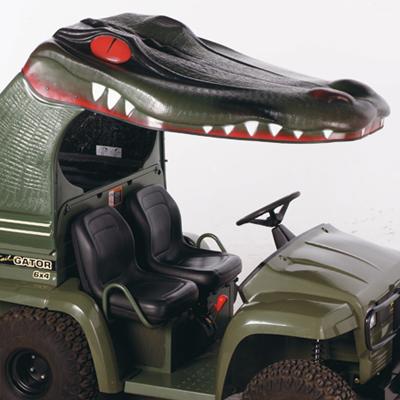 Toit mordant pour Gator... Seeyal10