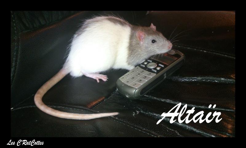 La troupe à Sadako : Les C'RatsCottes !! Altaar10