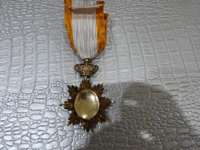 Medaille Dragon d'Annam ? P1050652
