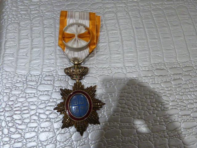 Medaille Dragon d'Annam ? P1050653