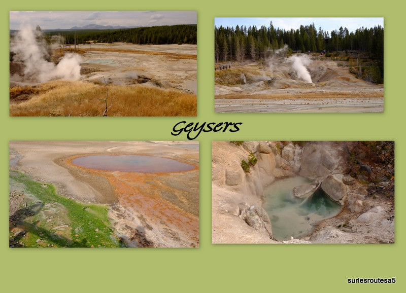 Le Parc National de Yellowstone. 12_yel18