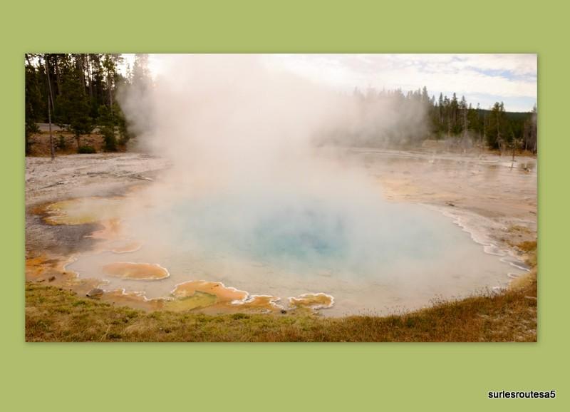 Le Parc National de Yellowstone. 12_yel19