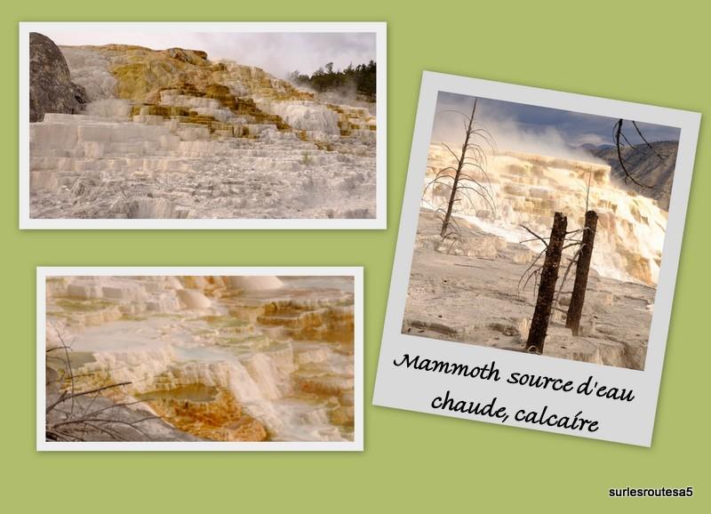 Le Parc National de Yellowstone. 12_yel23