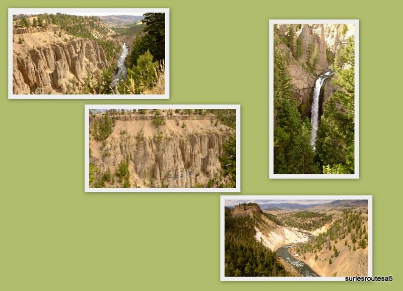 Le Parc National de Yellowstone. 12_yel26