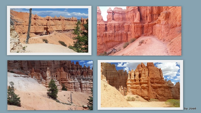 Le Parc National de Bryce Canyon. 7_bryc19