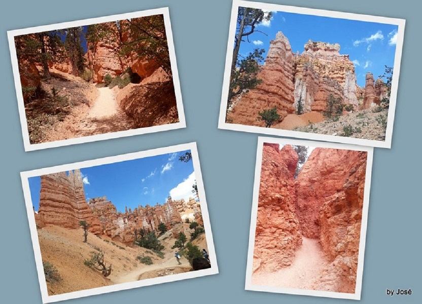 Le Parc National de Bryce Canyon. 7_bryc20