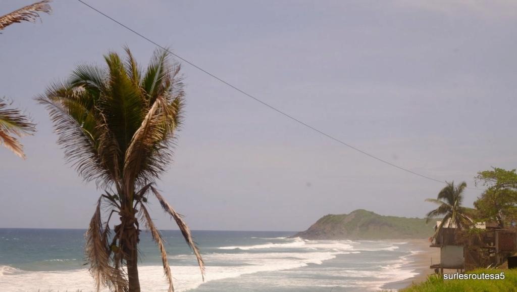 Le 27.06.2018 Acapulco et Puerto Vallarta. Dscf8710