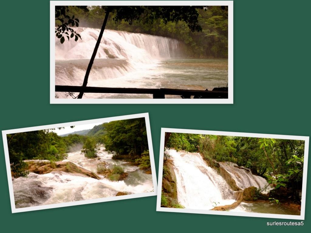 Le 15.06.2018  Palenque. Foto711