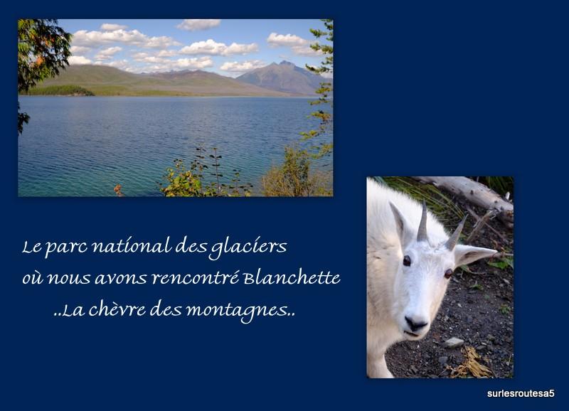 Le Parc National des Glaciers. Foto_u12