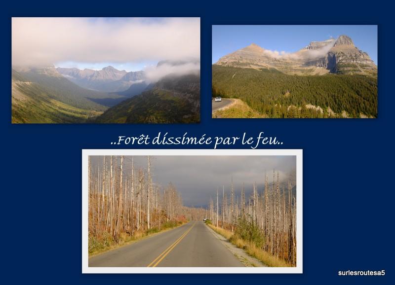 Le Parc National des Glaciers. Foto_u16