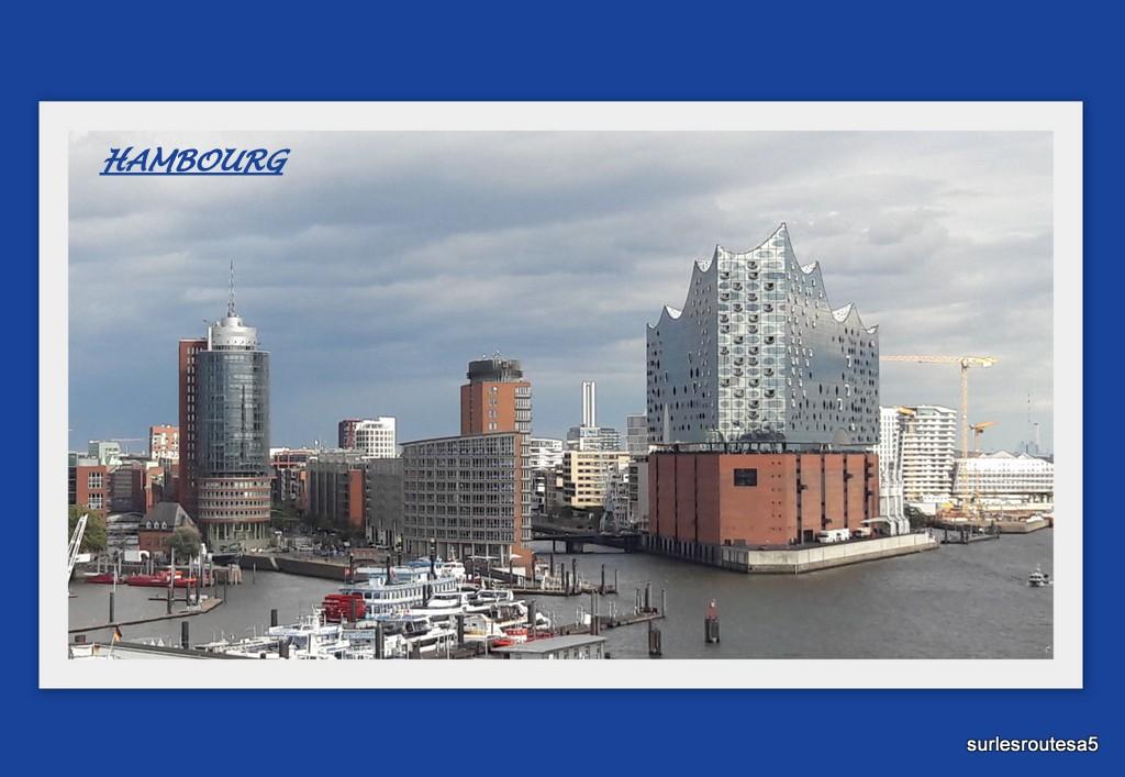 Croisière sur l'Atlantic star du 31.08 au 12.09.2019 . 2ème partie  Ham210