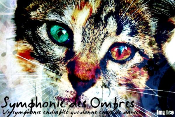 Symphonie des Ombres  - Clan des Lueurs - Guerrier Cat-wi11