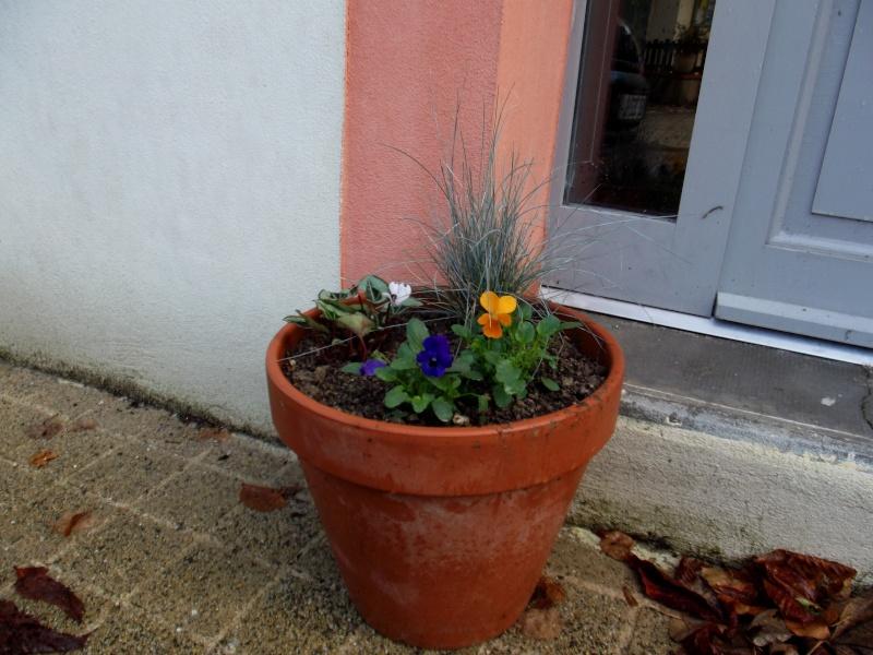 ATELIER création d'une jardinière fleurie de saison Dscf2618