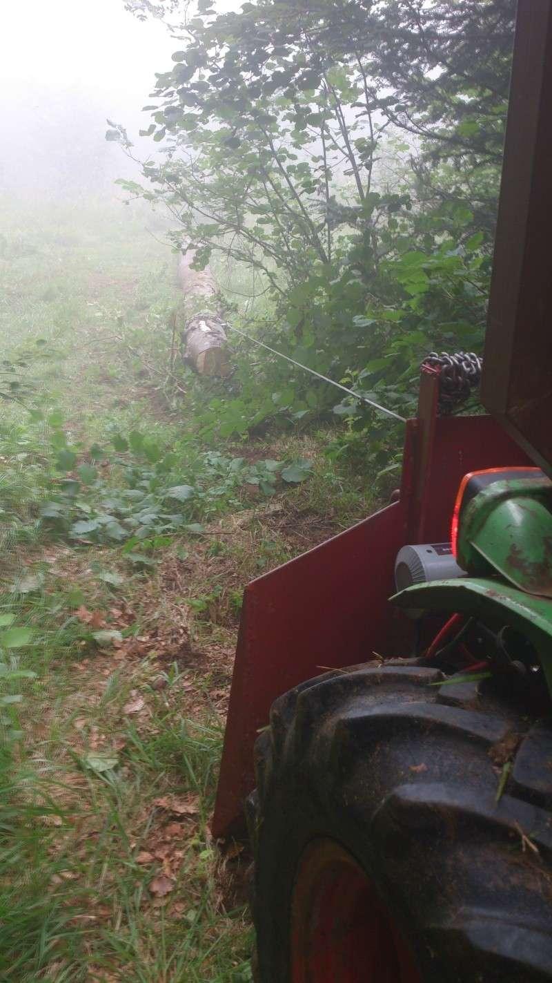 petite matinèe aux bois Dsc_1111