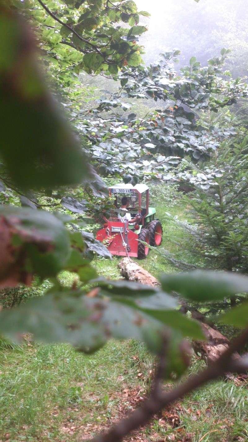 petite matinèe aux bois Dsc_1113