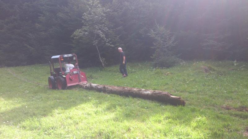 petite matinèe aux bois Dsc_1114