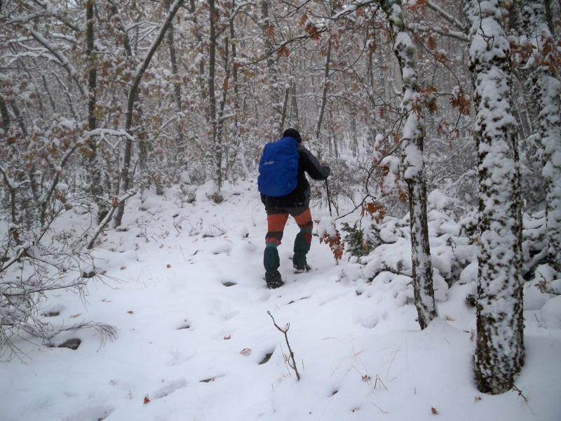 Senderismo invernal: domingo 17 de noviembre 2013 - Pico Merino (Sª de Ayllón) 004_ma10