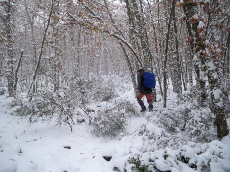 Senderismo invernal: domingo 17 de noviembre 2013 - Pico Merino (Sª de Ayllón) 005_ma10