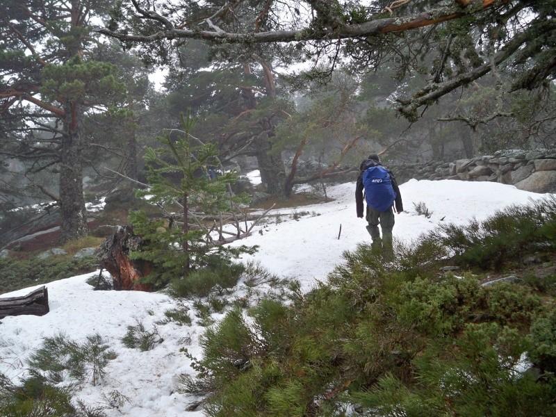 Montañismo: sábado 5 de abril 2014 - Ascensión a La Peñota 012_pa11