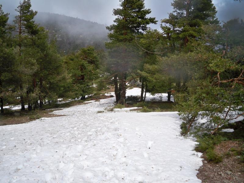Montañismo: sábado 5 de abril 2014 - Ascensión a La Peñota 021_de10