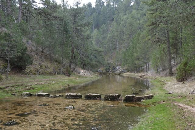 Senderismo y espeleología: 8 y 9 de febrero 2014 - Cañón del Río Lobos y Cueva de la Galiana - Página 3 9911
