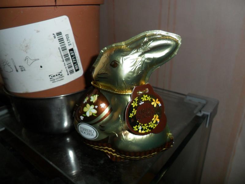 Mon petit lapinou 00110