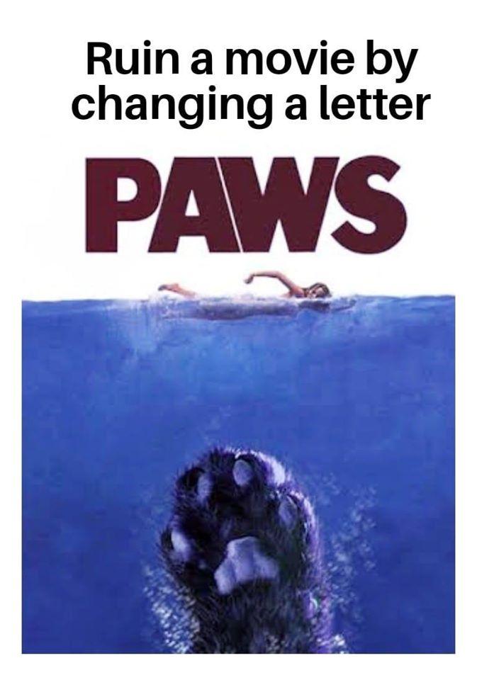 Le Flood en Images ! - Page 36 Paws10