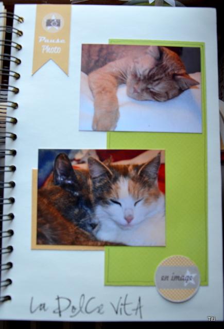 family diary de Titi MAJ du 16.12.13 Dsc_0311