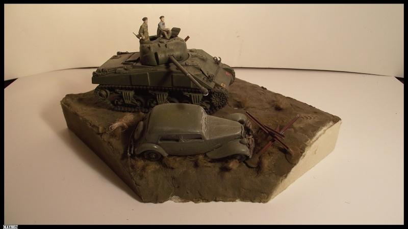mes dioramas Firefl10