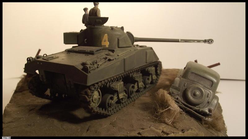 mes dioramas Firefl11