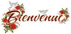 Bonjour tout le monde 2013-014