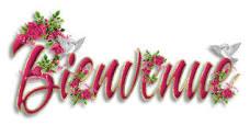 Bonjour à tous 2014-017
