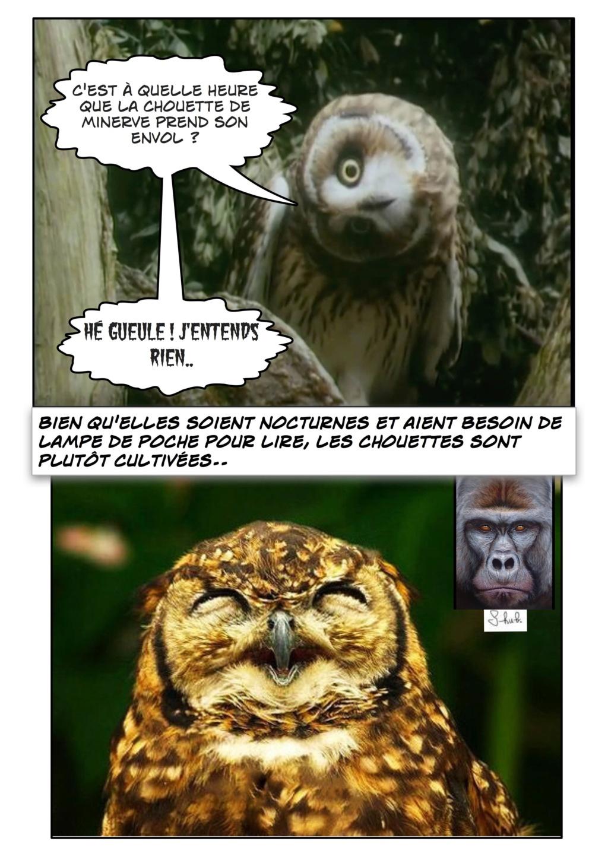 Qu'est-ce que la philosophie ? - Page 6 Comic_16