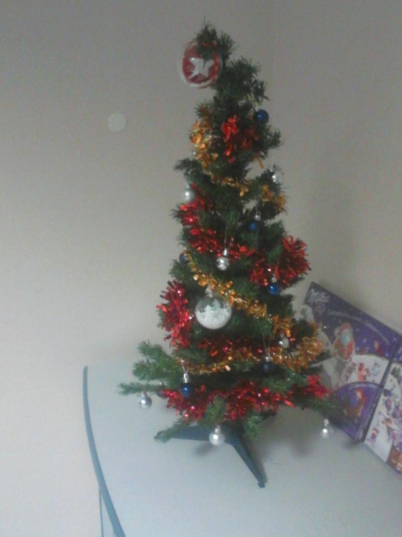 C'est bientôt Noël: montre moi ton sapin  !!  - Page 2 Dsc_0311