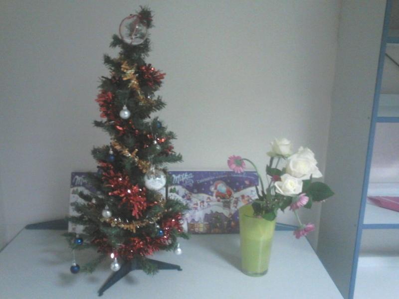 C'est bientôt Noël: montre moi ton sapin  !!  - Page 2 Dsc_0312