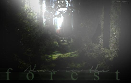 Larmy's LDD. ♥ Forest11