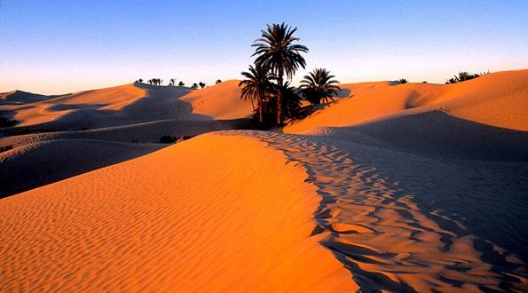 Les passés du Sahara Bankob10