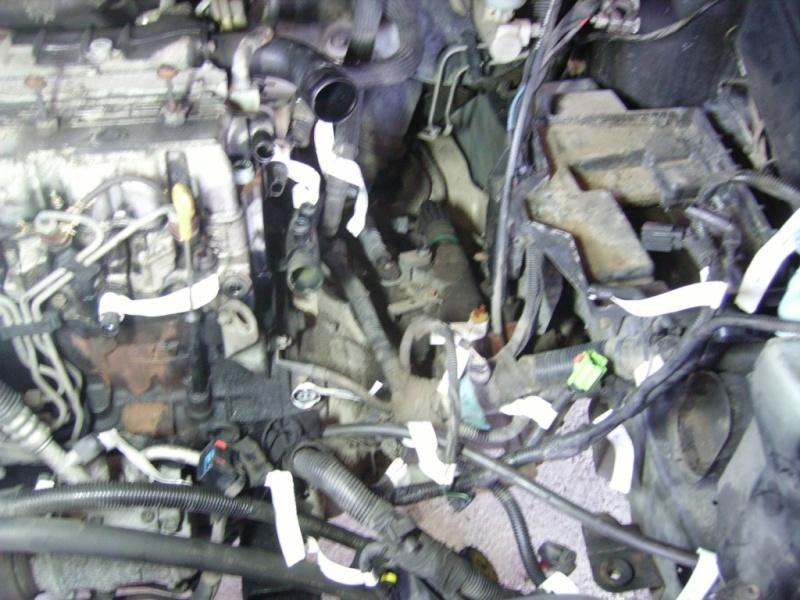 Claquement moteur Imgp0015