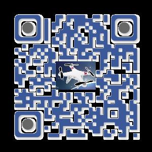 Flash Code à effigie du forum   Qrcode10