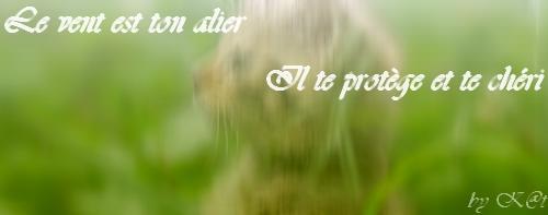Nuage des vents , le vent est ton alier , il te protège et te chéri . Noublie jamais ce que je t'ais dit . 42695610