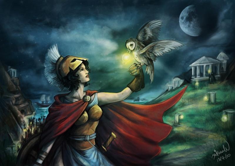 La Chouette Athena10