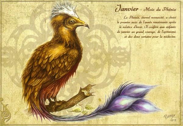 Le grand bestiaire de Séverine Pineaux Janv10
