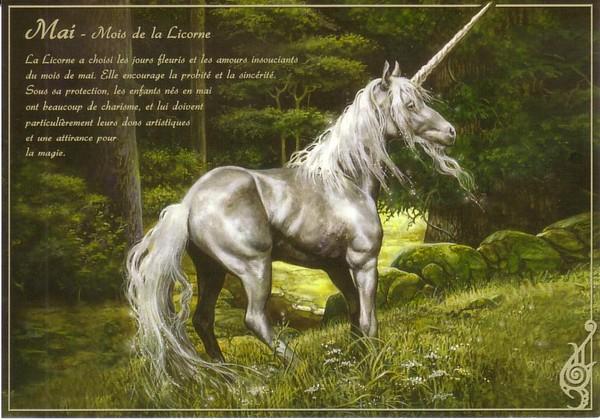 Le grand bestiaire de Séverine Pineaux Mai10