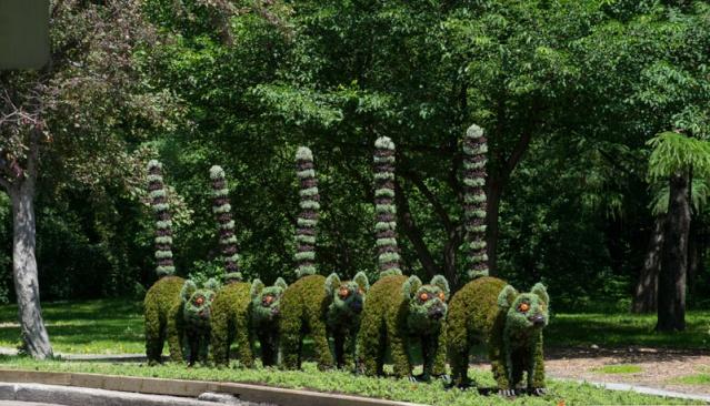 sculptures Horticoles Scuptu10