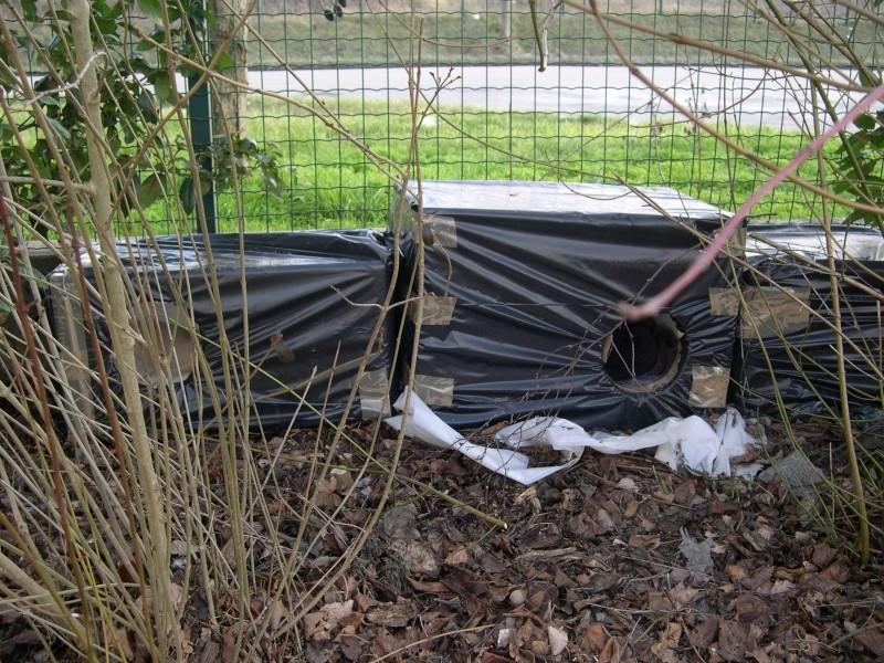 GRATUIT : dons de caissons en plystyrène pour fabriquer des abris anti-froid (chats nomades) Dscn2615