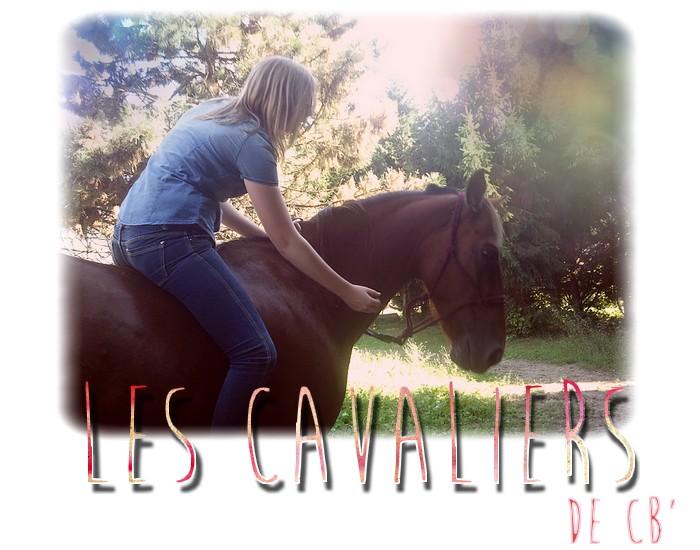 Les Cavaliers de Cheval Blog