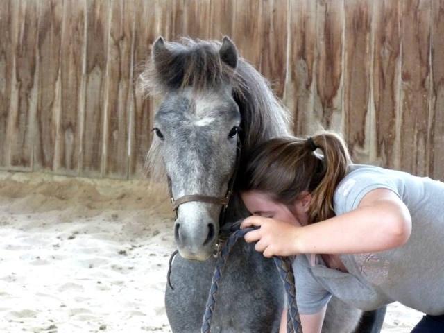 Lire le physique des chevaux - Linda Tellington Jones!  58060410