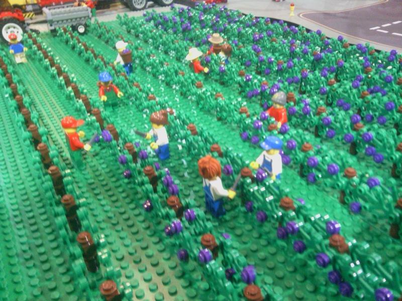 [Expo] Retour sur l'expo Fans de Briques 2013 à Talence Img_2021